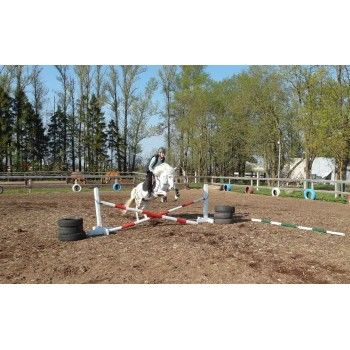 Верховая езда - индивидуальное занятие - будни