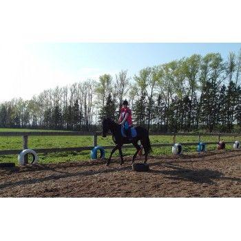 Верховая езда - разовое занятие - будни