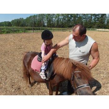 Катание на лошади прайс-лист