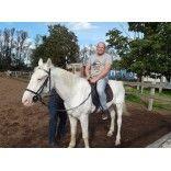 Катание на лошади выходные