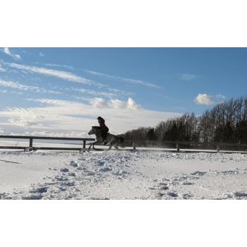 Прогулка в поля прайс-лист